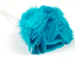 feather_duster_spring_clean